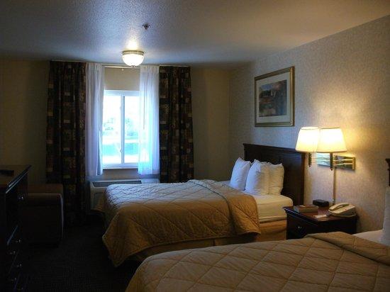 Comfort Inn: Nice room