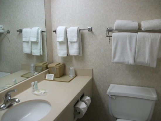 Comfort Inn: Clean Bathroom