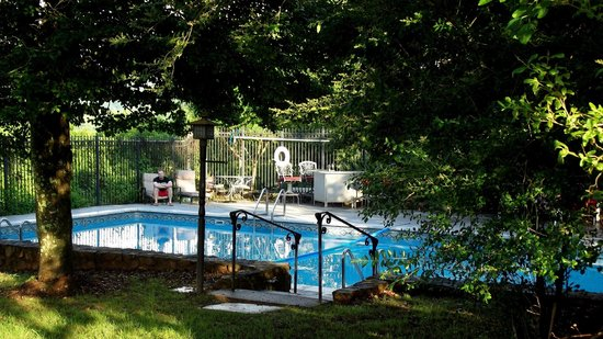 Briar Patch Bed & Breakfast: View of the pool