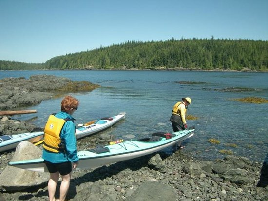 Discovery Expeditions Day Tours: out for a paddle