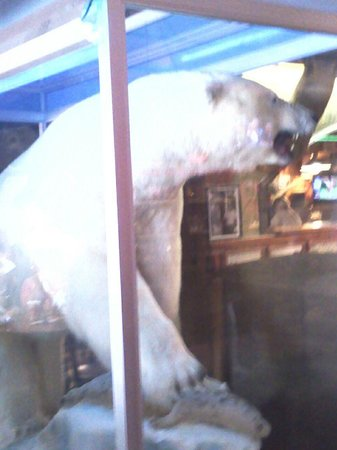 Ole's Big Game Steakhouse & Lounge: Huge polar bear greets you at the door.