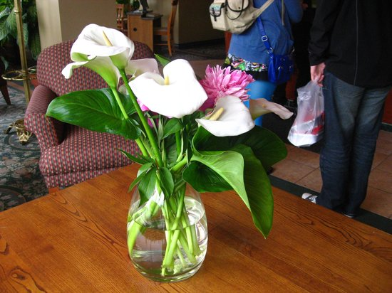 Budget Inn Patricia Hotel: the flower in this hotel