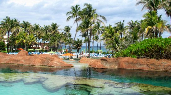 Marine Habitat at Atlantis: piscinas donde habitan tiburones
