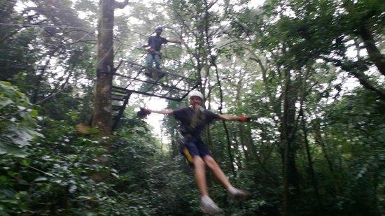 Monteverde Frog Pond: Taking off