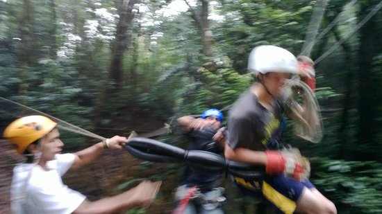Monteverde Frog Pond : The inner-tube catch at the end of the Tarzan swing