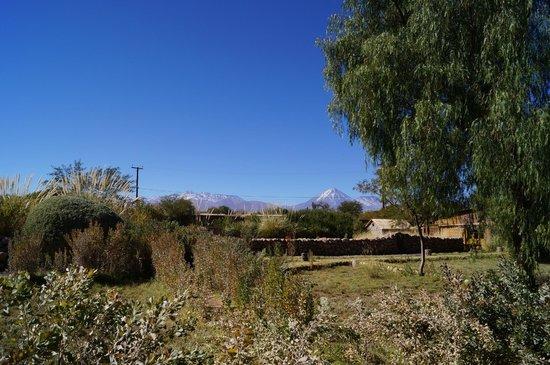 Altiplanico Atacama: Vista desde uno de los patios