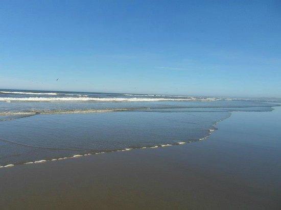 Ocean City State Park: ocean
