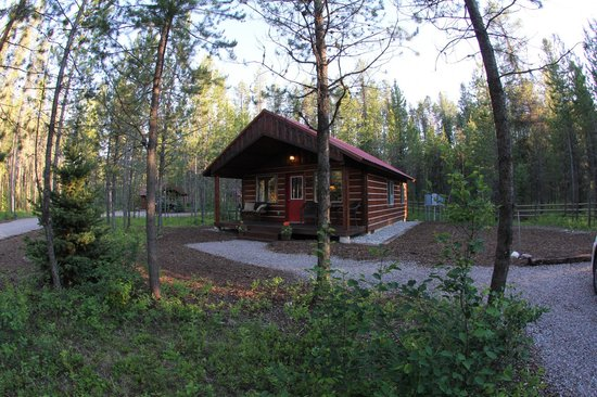 Reclusive Moose Cabins : Moose Cabin