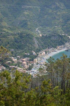 B&B Cicale di Mare: View of Monterosso