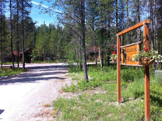 Reclusive Moose Cabins: Cabins