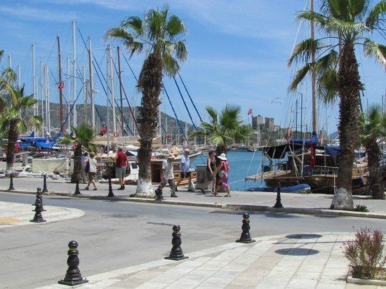 Kocadon : Bodrum harbour - outlook from Restaurant