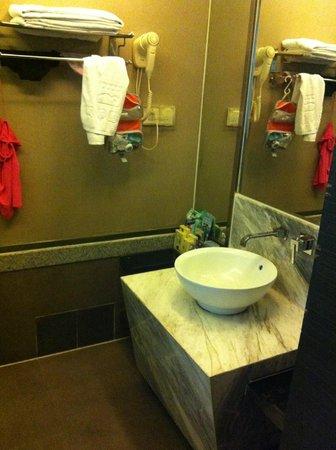 Elegance Hotel: Bathroom