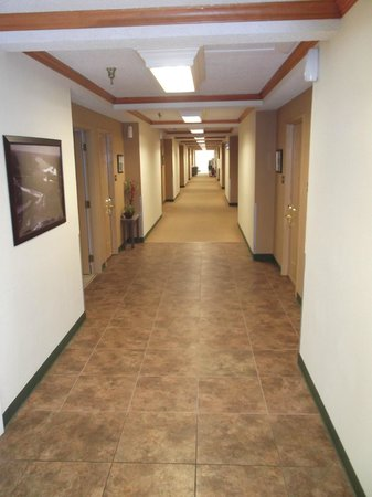LakeHouse Hotel: New tile in the hallway near laundry