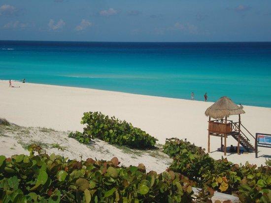 Playa Delfines: praia