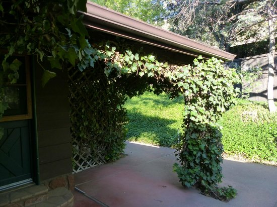 Briar Patch Inn: Beautiful green vines growing on the porch of Eagle cabin