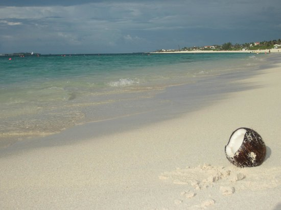 The Beach at Atlantis, Autograph Collection: Bahamas At Its Best