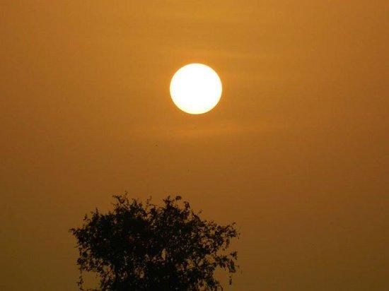 Nalsarovar bird sanctuary: sunrise Nalsarovar
