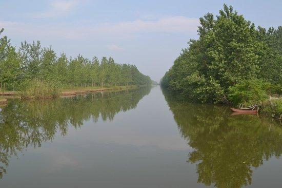 宝应湖照片