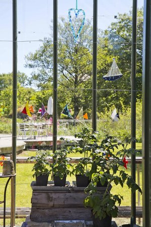 Kosters Tradgardar Cafe: View of glasswork and gardens from one of the greenhouses