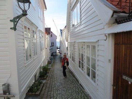 Skuteviken Guesthouse: The front door