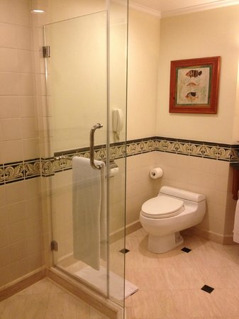 Sheraton Hanoi Hotel: バスルーム