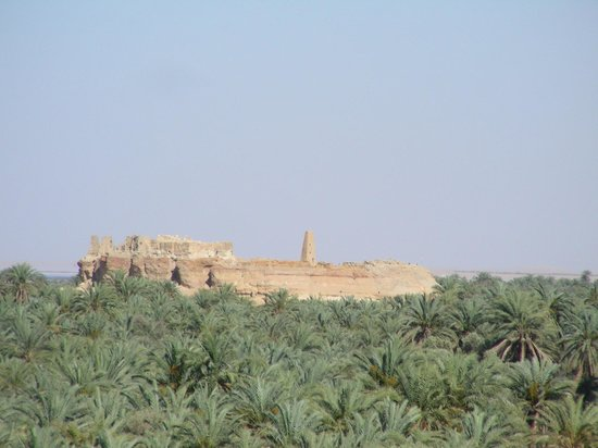 Temple of the Oracle of Amun / Aghurmi: amun ra