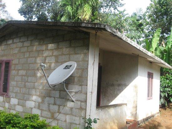 Tribal house picture of melvins homestay kalpetta for Tribal house
