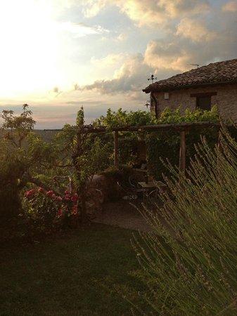 Il Borghetto di Bazzano : Blick auf die Terrasse des 2-Personen-Apartments