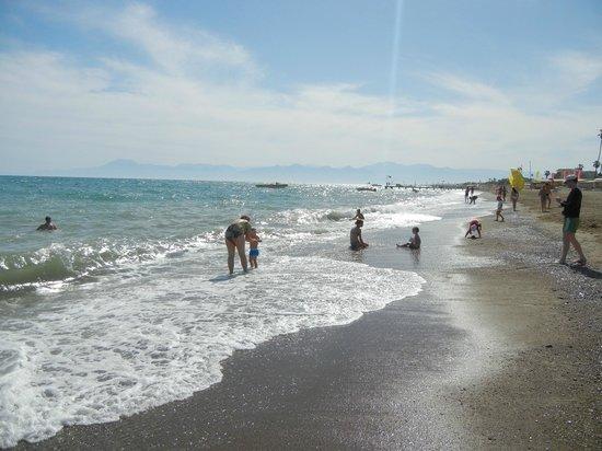 Green Max : Пляж