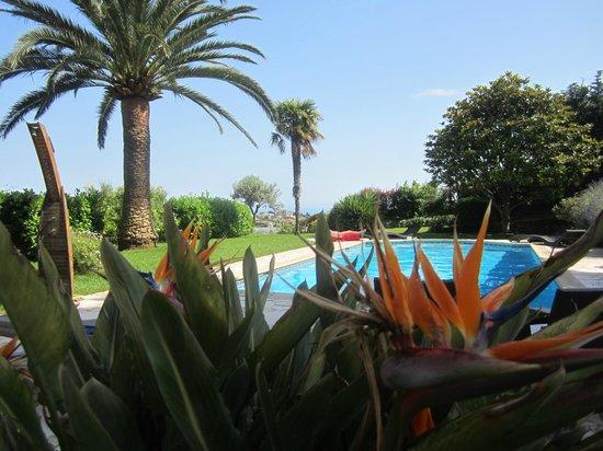 Villa Antoline : Dintorni piscina