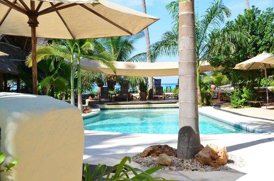 Sunshine Hotel: Pool area
