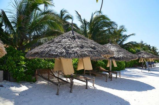Sunshine Hotel: Beach