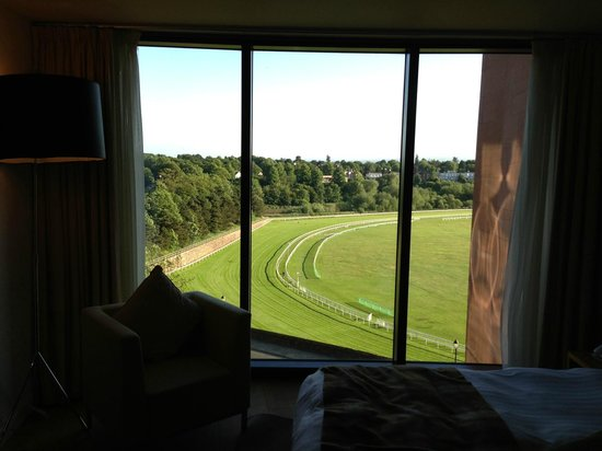 Abode Chester: Chester Racecourse view