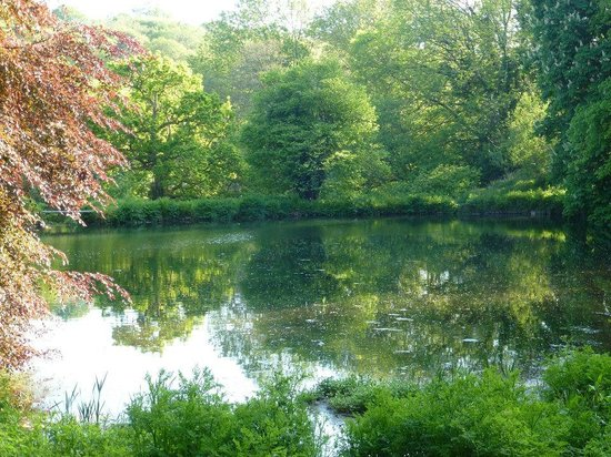 Hotel Endsleigh: Lake in Hotel Grounds