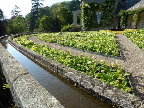Hotel Endsleigh: Hotel Gardens