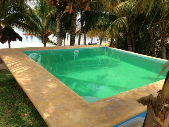 El Milagro Beach Hotel and Marina: Deep spring fed pool... perfect relaxation