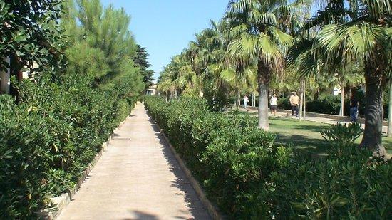 Baia degli Dei - Beach Resort&Spa: Esterno