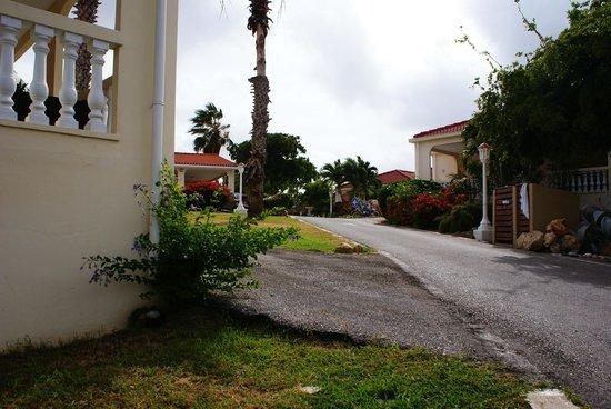 Livingstone Jan Thiel Resort: De appartementen liggen aan een (rustige) weg door het park
