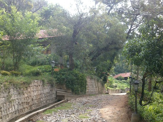 Old Kent Estates, Coorg: Way to chalets