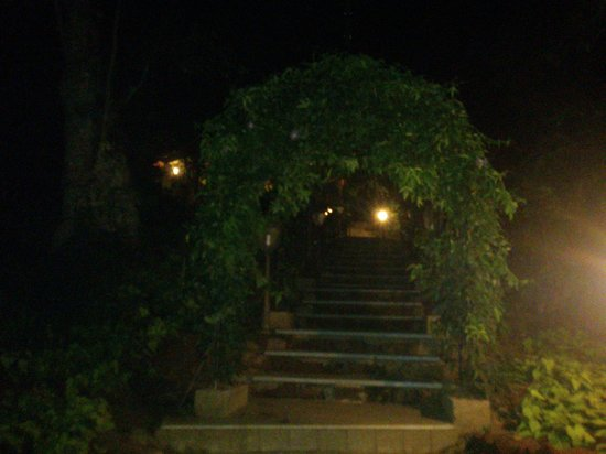 Old Kent Estates, Coorg: Steps that lead to breakfast area (in the night)