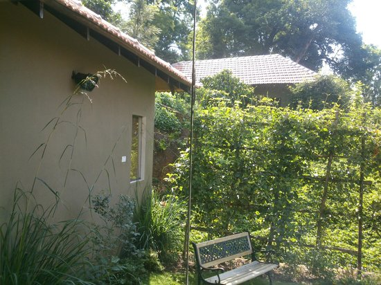 Old Kent Estates, Coorg: View from the living area's glass pane