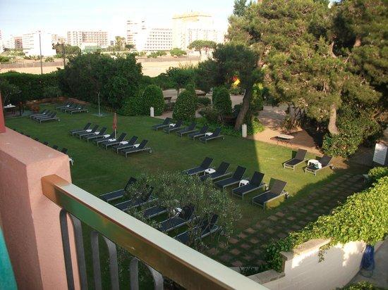 Hotel Luna Club: gorgeous grass sunbathing area (yoga thai chi etc)