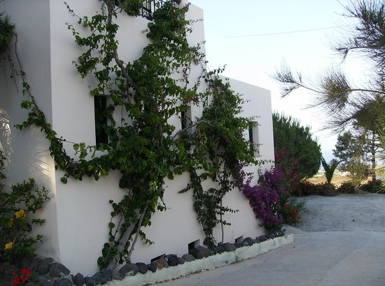 Costa Marina Villas: Impeccably maintained landscaping and gardens