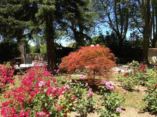 Manoir de la Roseraie : Front entry garden