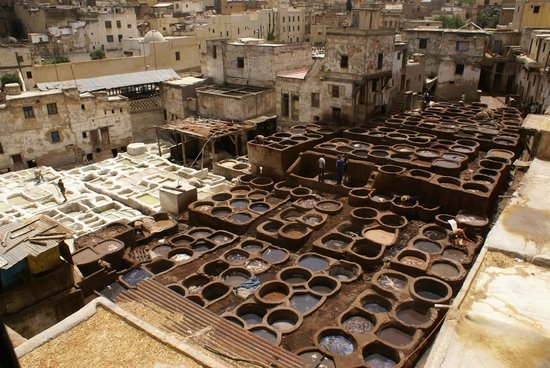 Morocco Extra Tours - Day Tours: Curtiembre de cuero en Fes.