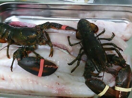 La Locanda dei Sapori: pesce fresco dal giovedì alla domenica
