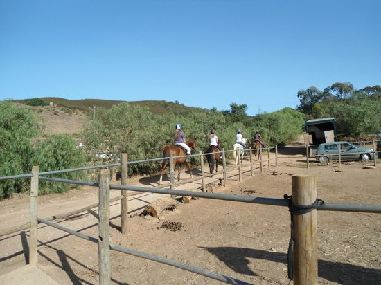 QPA Horse Riding Centre