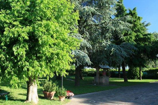 L'Oasi di Pasqua B&B : parco con alberi ad alto fusto