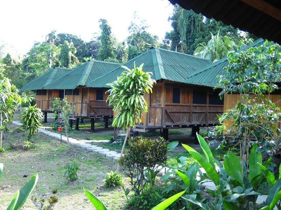 Ecoamaziona Lodge: Cabins