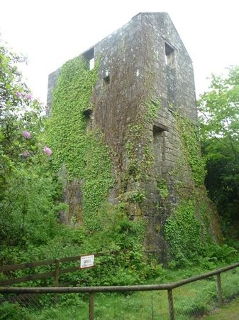 Wheal Martyn: Hidden engine house on the nature walk.